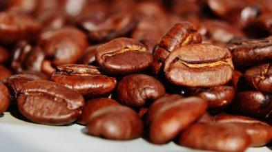 O kávě Qava z Indonésie