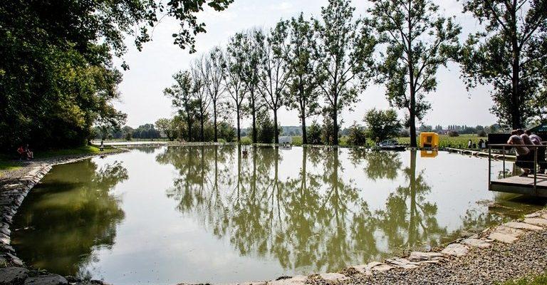 Rybníky pod Bedřiškou v ostravském obvodu Nová Ves. Foto: Adolf Horsinka